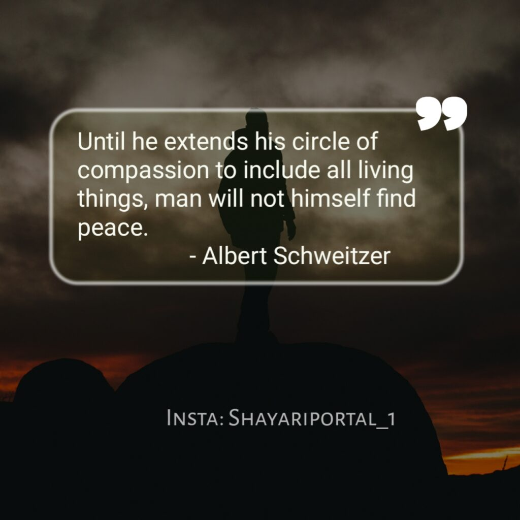 international peace day quotes